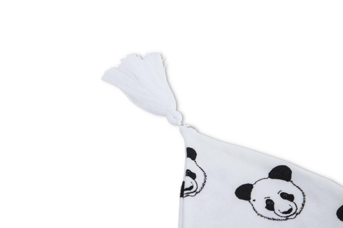 astor panda 1