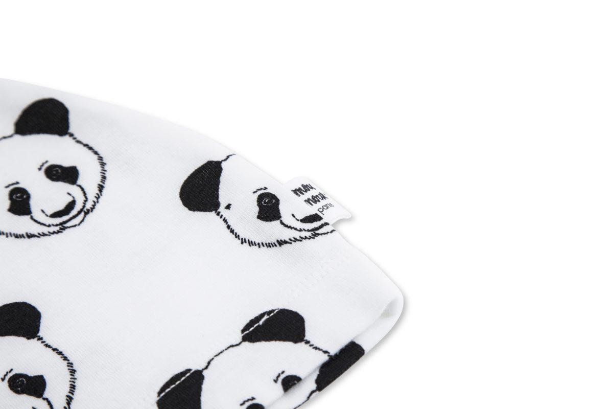 astor panda 2