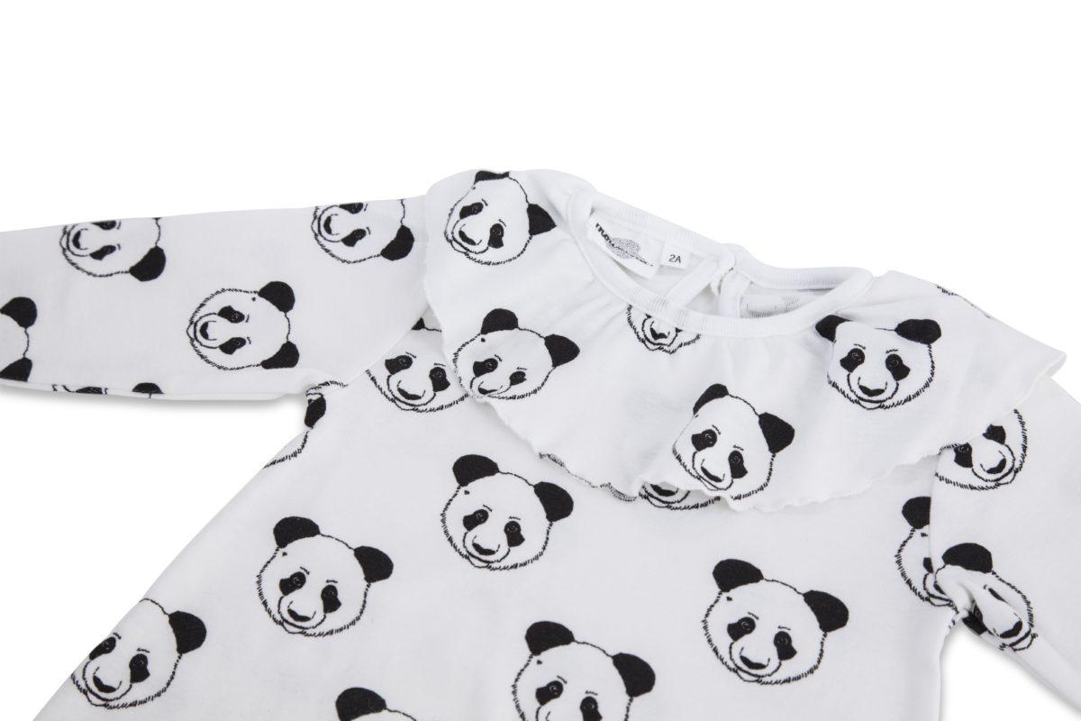 moly panda 1