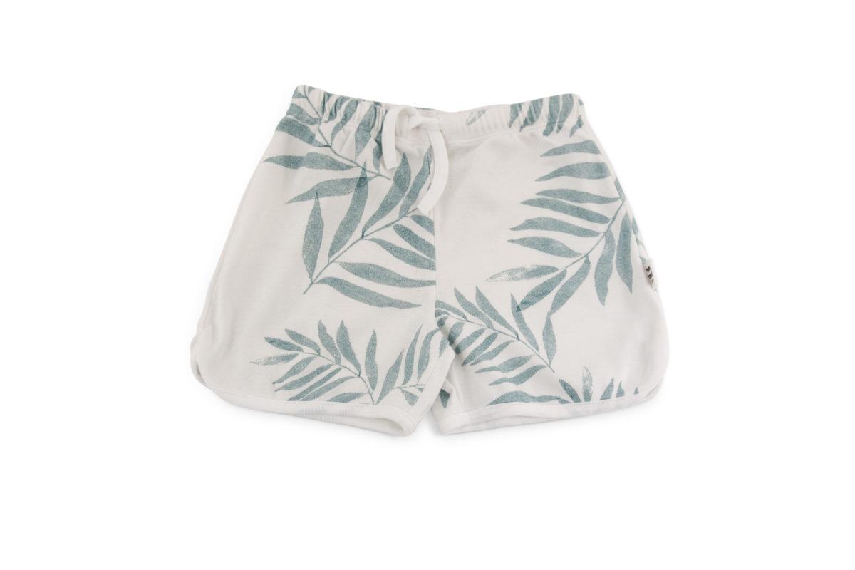 shorty palme
